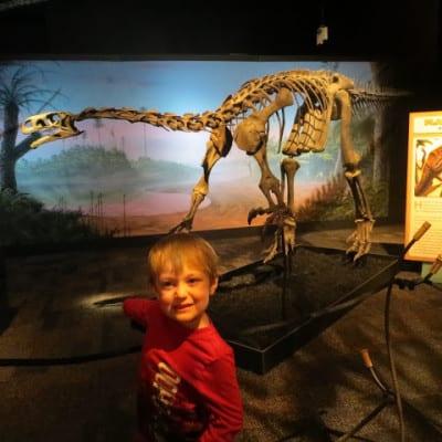 Dinosaurs in Arizona!