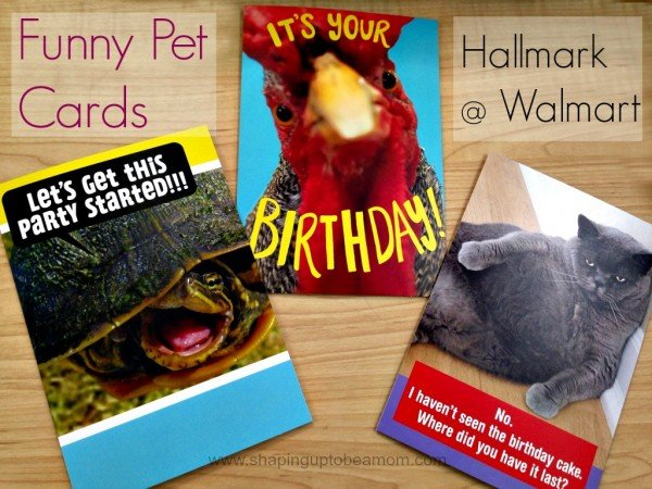 #FunnyPetCards #shop