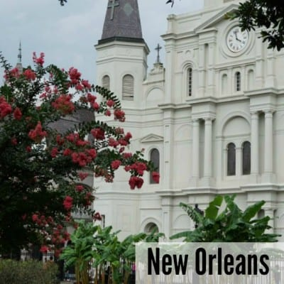 Trip Report: New Orleans