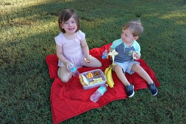 healthy-picnic