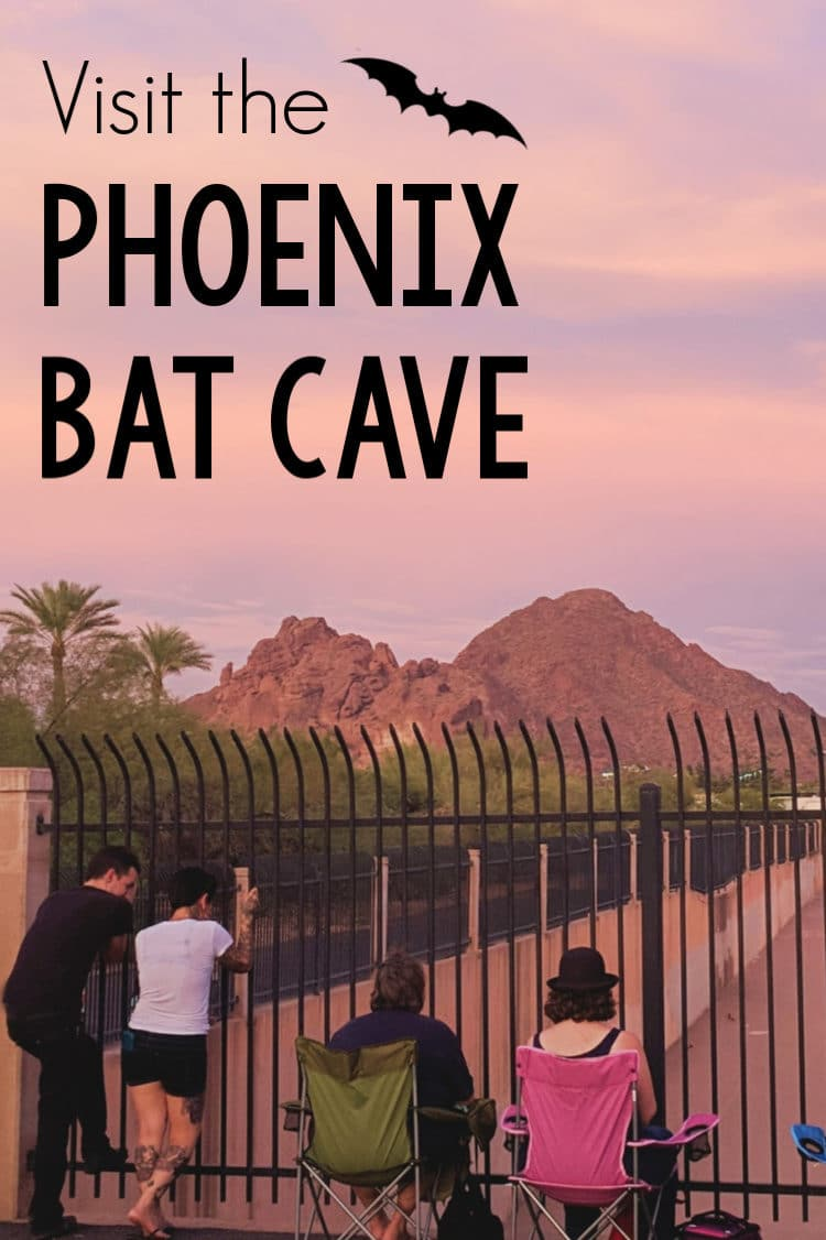 Visit the Phoenix Bat Cave if you dare! Thousands of bats fly out from a storm drain each twilight during the summer. #Phoenix #summer #travel