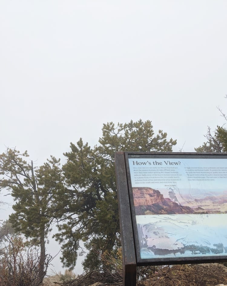 foggy view at grand canyon