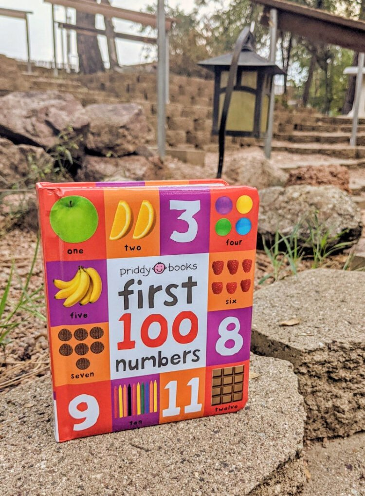 First 100 Numbers book